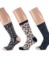 Dames fashion sokken pak luipaard goedkope beige navy maat
