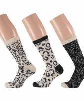 Dames fashion sokken pak luipaard goedkope beige zwart maat