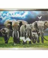 Goedkope d olifanten poster zilveren lijst