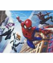 Goedkope d placemat marvel spiderman friends