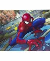 Goedkope d placemat marvel spiderman
