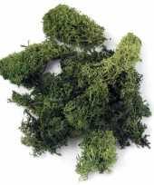 Goedkope decoratie mos donkergroen gram 10122524