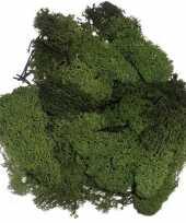 Goedkope decoratie mos donkergroen gram 10129499
