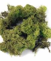 Goedkope decoratie mos lichtgroen gram