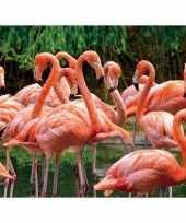 Goedkope dieren magneet d flamingo
