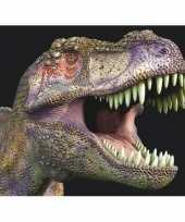 Goedkope dieren magneet d t rex