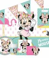 Goedkope disney minnie mouse kinderfeestje feestpakket personen