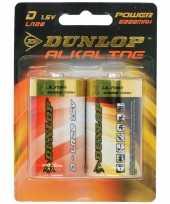 Goedkope dunlop alkaline batterijen lr d stuks
