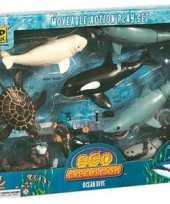 Goedkope eco expeditie speelset oceaan