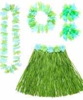 Goedkope groene hawaii verkleedset dames