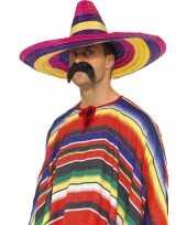 Goedkope grote gekleurde sombrero 10033299