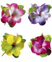 Goedkope hawaii haarclip grote bloem