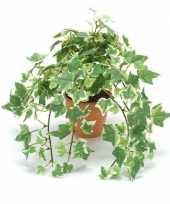 Goedkope kantoor kunstplant klimop groen wit terracotta pot