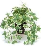 Goedkope kantoor kunstplant klimop groen wit zwarte pot