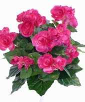 Goedkope kunst begonia roze