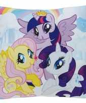 Goedkope kussen my little pony