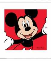 Goedkope mickey mouse poster karton
