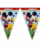 Goedkope mickey mouse vlaggenlijn meter