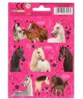 Goedkope paarden stickers stuks set 10117750