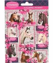 Goedkope paarden stickers stuks set