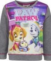 Goedkope paw patrol sweater grijs