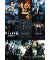 Goedkope poster harry potter maxi