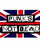 Goedkope punks not dead vlag