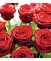 Goedkope rode rozen servetten stuks
