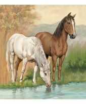 Goedkope servetten paarden laags stuks