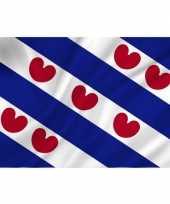 Goedkope vlag friesland