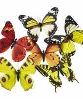 Goedkope vlinder magneet geel oranje