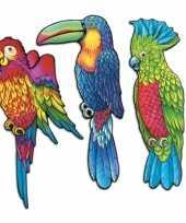 Goedkope wanddecoratie tropische vogels stuks