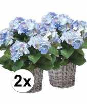 Goedkope x blauwe hortensia kunstplant mand