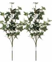 Goedkope x groen geelbonte hedera klimop kunsttakken kunstplanten