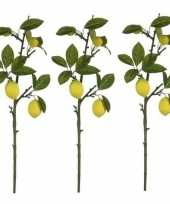 Goedkope x groen gele citroenboom fruitboom kunsttak kunstplant 10159953