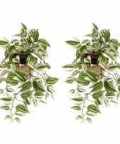 Goedkope x groene tradescantia vaderplant kunstplanten