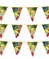 Goedkope x hawaii thema vlaggenlijnen meter