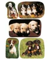 Goedkope x honden puppy dieren stickers 10139657