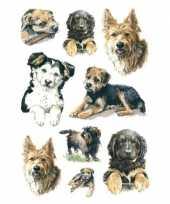 Goedkope x honden puppy dieren stickers 10139716