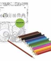 Goedkope x knutsel papieren maskers om te kleuren incl potloden