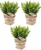 Goedkope x kunstplanten muizendoorn kruiden groen jute pot 10162079