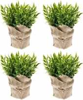 Goedkope x kunstplanten muizendoorn kruiden groen jute pot 10162080