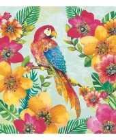 Goedkope x papegaai thema servetten 10147562