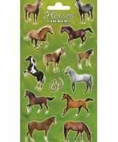 Goedkope x stickervelllen grote paarden goedkopes