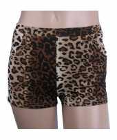 Luipaard goedkope hotpants dames